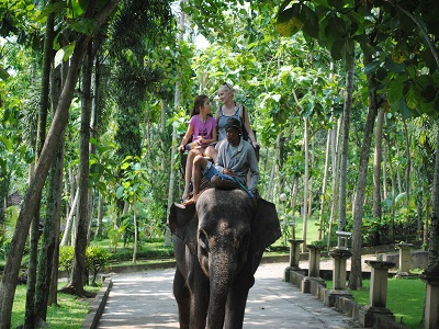 Bali Ayung Rafting and Elephant Ride Tour, Bali Elephant Ride Adventure